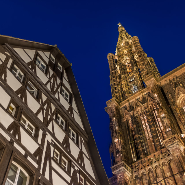 """""""View of Strasbourg Cathedral from ground. Alsace"""" stock image"""