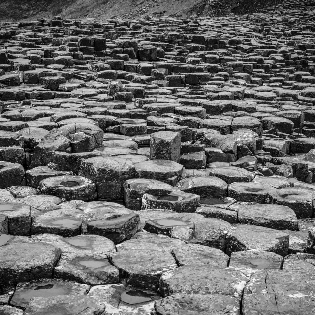 """My World - Giant's Causeway, Northern Ireland"" stock image"