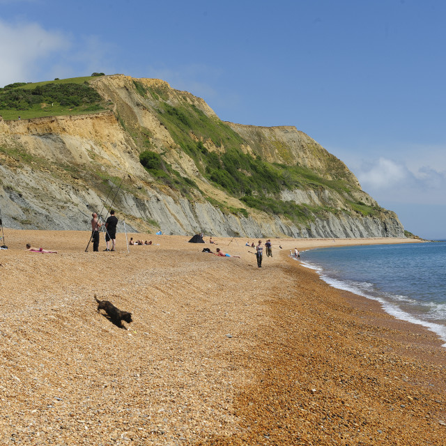 """Seatown Beach, Dorset"" stock image"