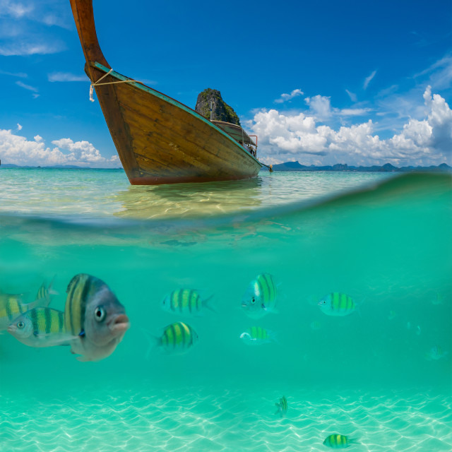 """""""Underwater picture with fish and traditional longtail boat in Ma"""" stock image"""