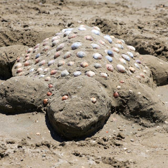 """Sand turtle on the beach of Laganas Greece"" stock image"