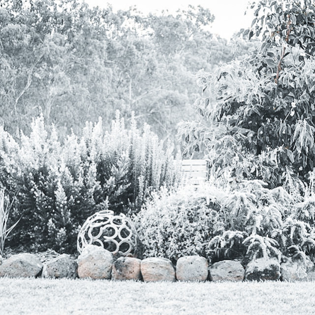 """""""Cold Frosty Morning"""" stock image"""