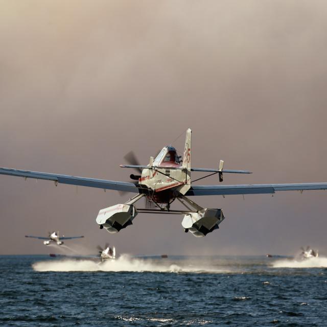 """Water Bombers on Okanagan Lake"" stock image"