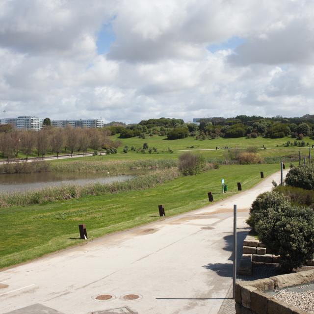 """Cidade City Park in Porto"" stock image"