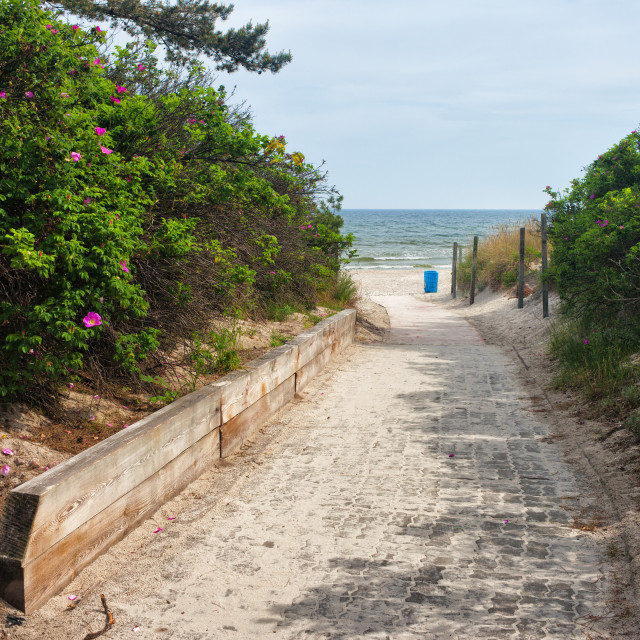 """""""Entrance To The Beach in Wladyslawowo"""" stock image"""