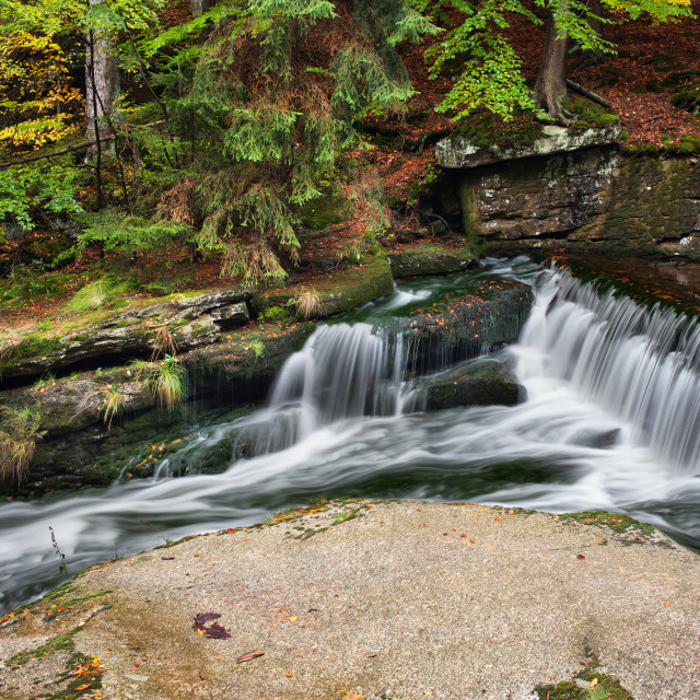 """""""Cascading Stream in Mountain Forest"""" stock image"""