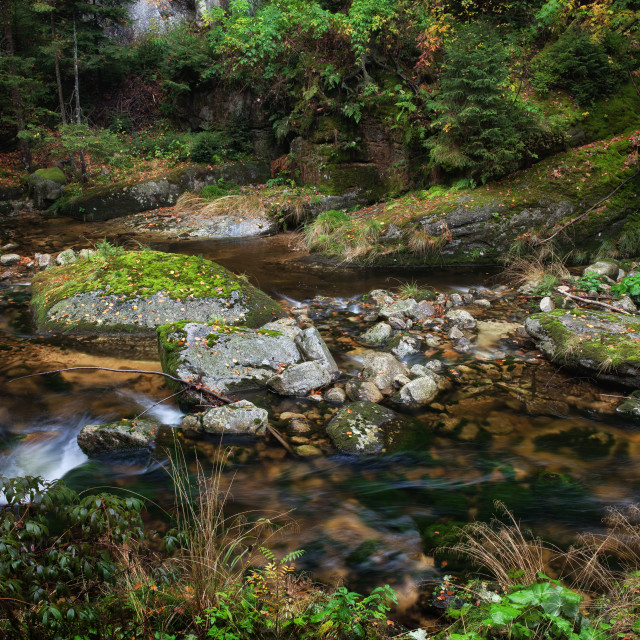 """Stream in Karkonosze Mountains"" stock image"