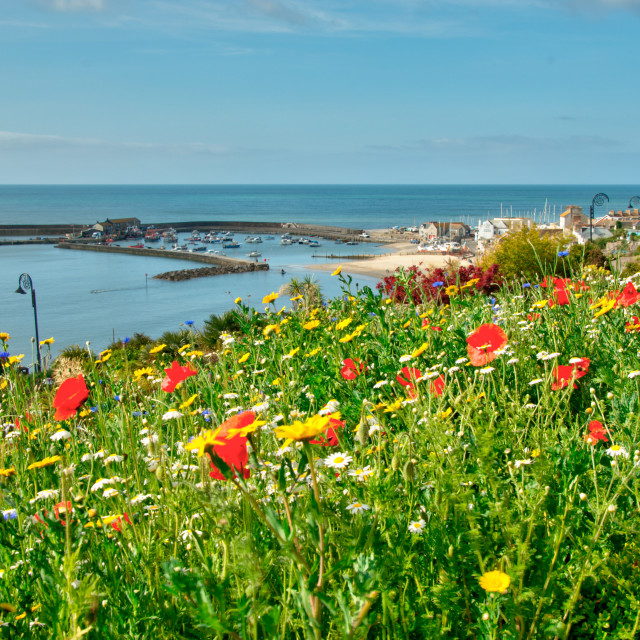 """""""Colour above the harbour"""" stock image"""