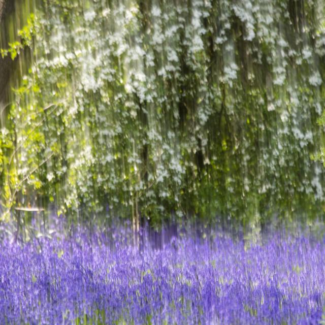 """""""Impressionist Springtime"""" stock image"""