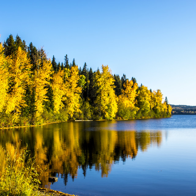"""Fall on West Lake"" stock image"