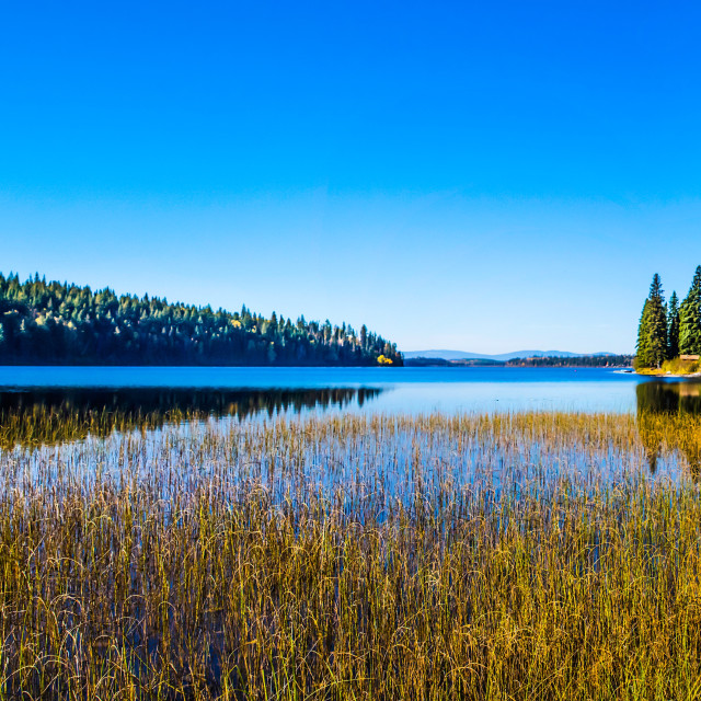 """Norman Lake Panorama"" stock image"