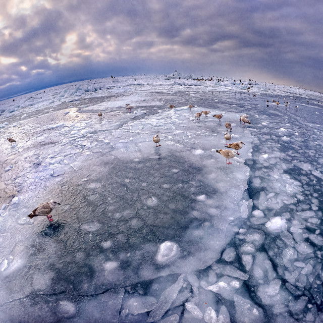 """Frozen Sea"" stock image"