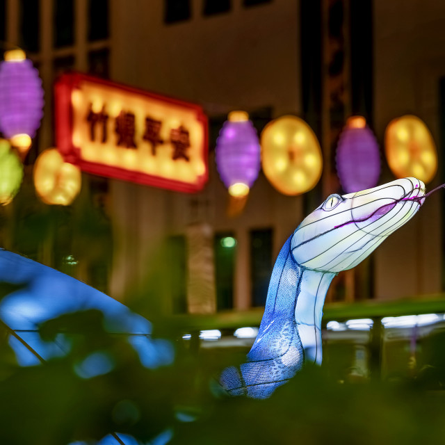 """""""Year of the Snake 01"""" stock image"""