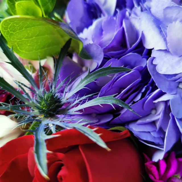 """""""Another Bouquet of flowers"""" stock image"""