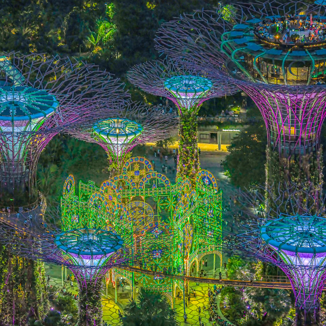 """""""Supertrees Lightup 01"""" stock image"""