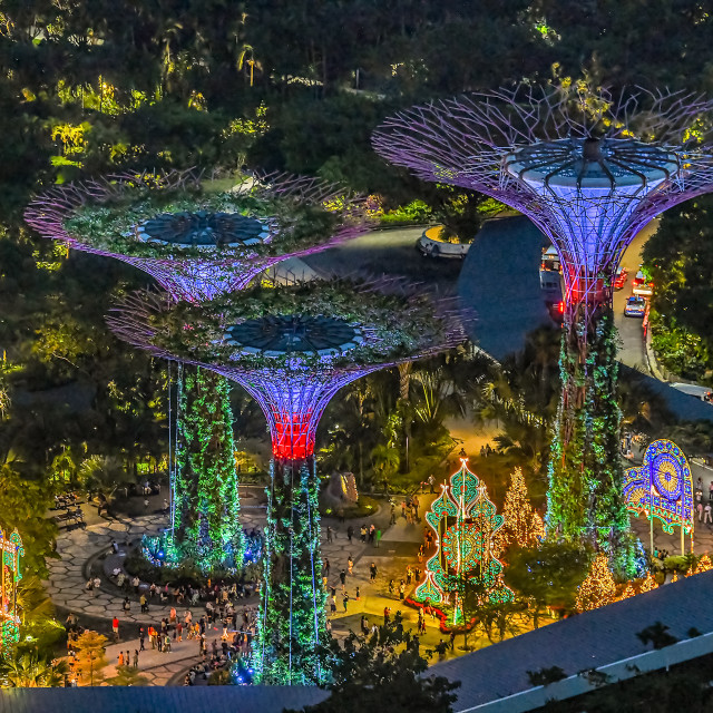 """""""Supertrees Lightup 02"""" stock image"""