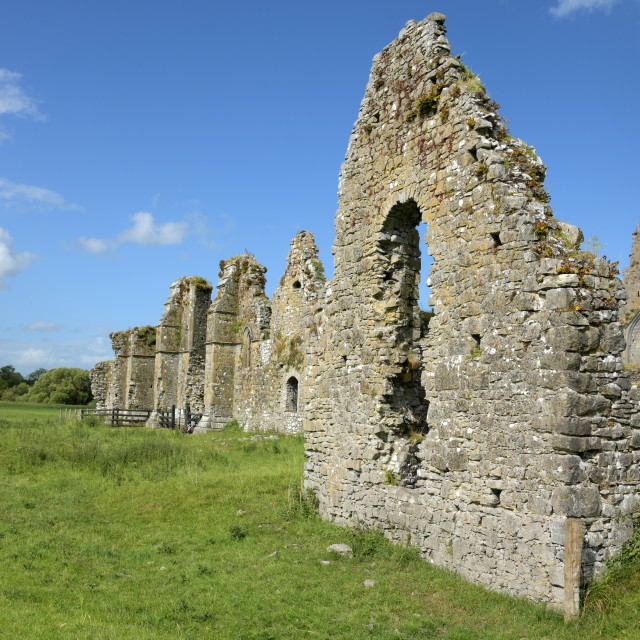 """""""Athassel Abbey"""" stock image"""