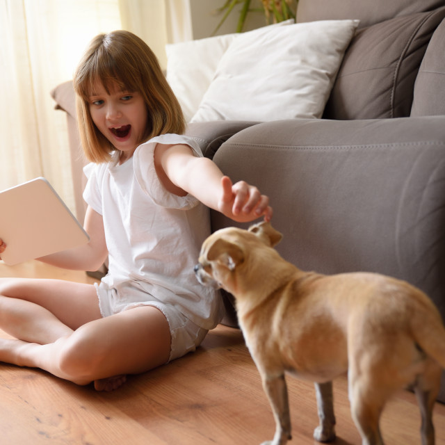 """""""Little girl entertaining at home with tablet and dog"""" stock image"""
