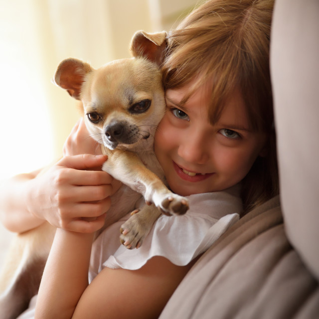 """""""Smiling girl caught face to face with her dog"""" stock image"""