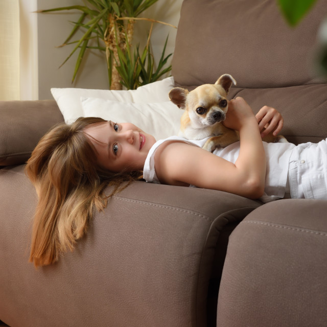 """""""Smiling girl lying with her dog on the sofa relaxed"""" stock image"""