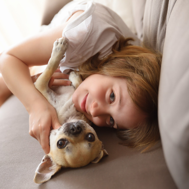 """""""Smiling girl lying with her dog on the sofa"""" stock image"""