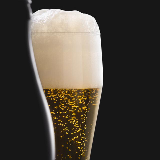 """Glass of beer and bottle silhouette. German pilsner beer"" stock image"
