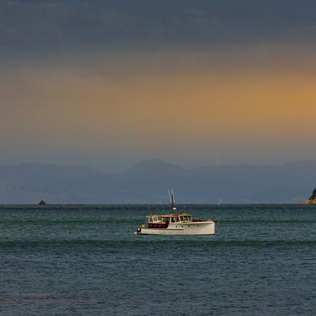 """Waiheke Island"" stock image"