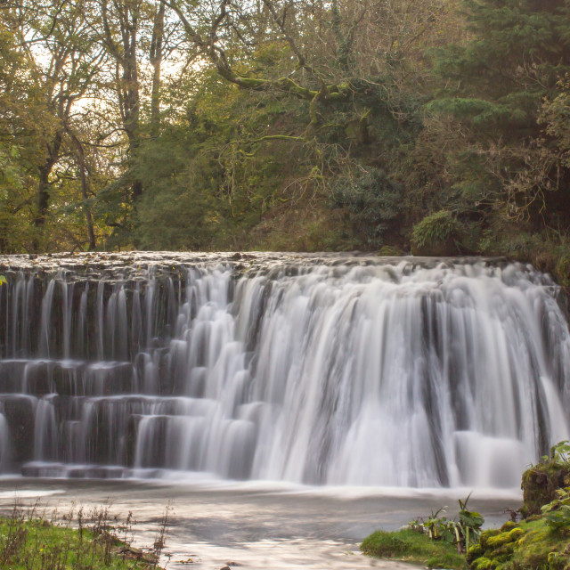 """""""Rutter Force."""" stock image"""