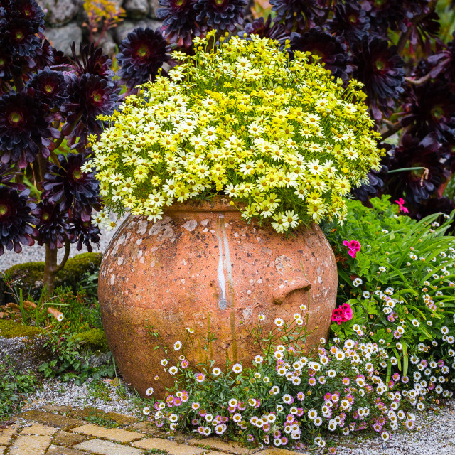 """""""Flowers in an Urn"""" stock image"""