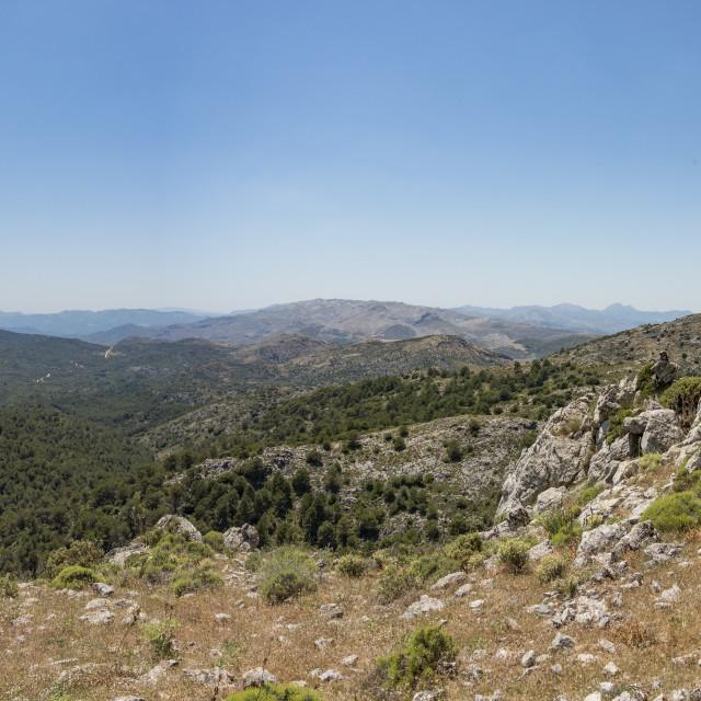 """""""Sierra de las Nieves, Spanish reserve in southern Spain."""" stock image"""