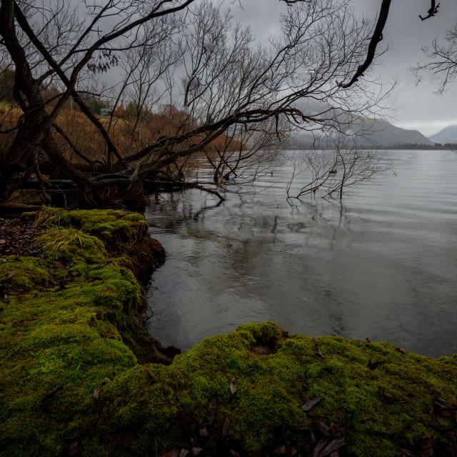 """Lake Hayes"" stock image"