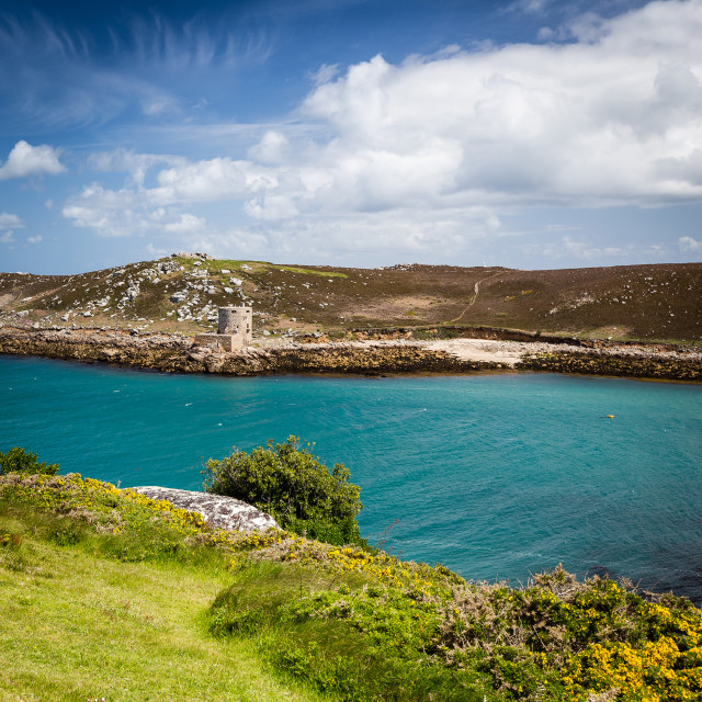 """""""Looking at Cromwell's Castle from Bryher"""" stock image"""