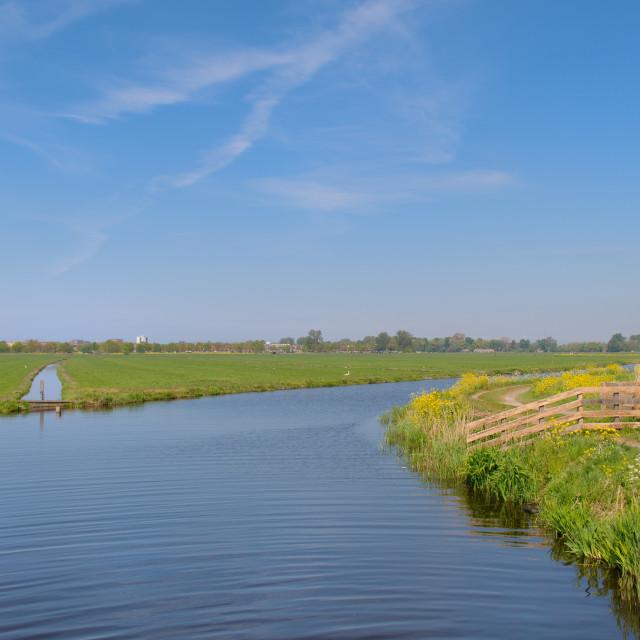 """Typical Dutch landscape"" stock image"