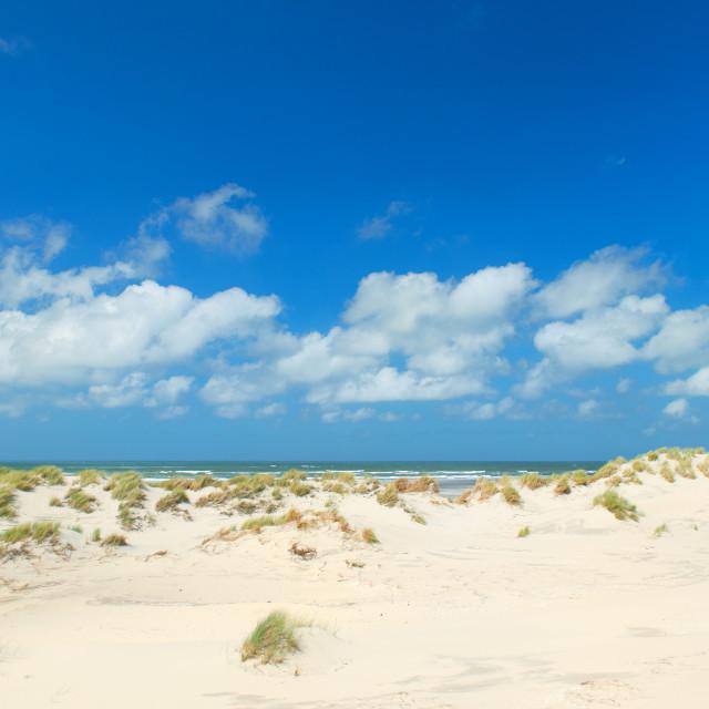 """Landscape empty beach with dunes"" stock image"