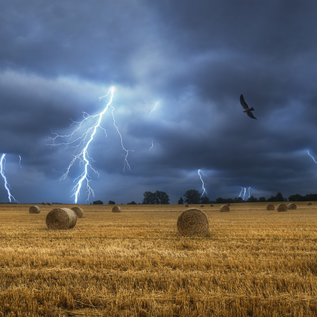 """""""Hay bales on field during a lightning storm. Dark and stormy landscape"""" stock image"""