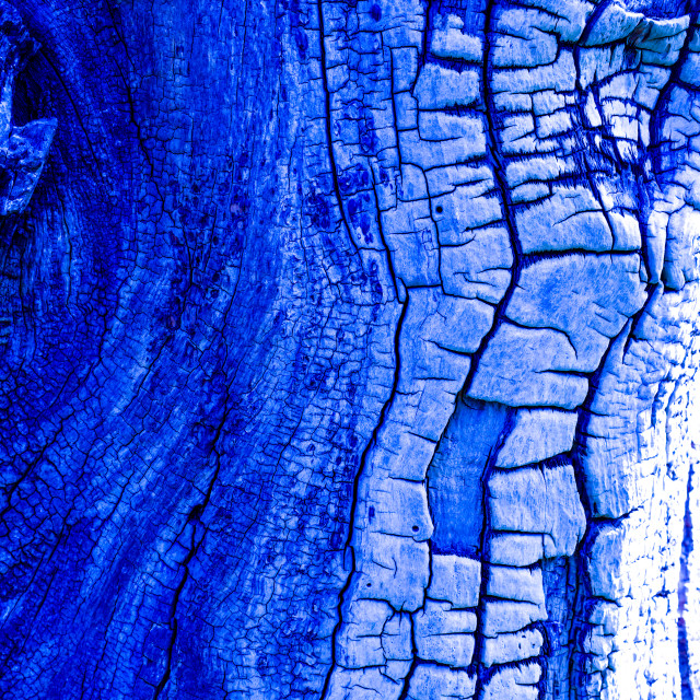 """Wildwood No3 Blue"" stock image"