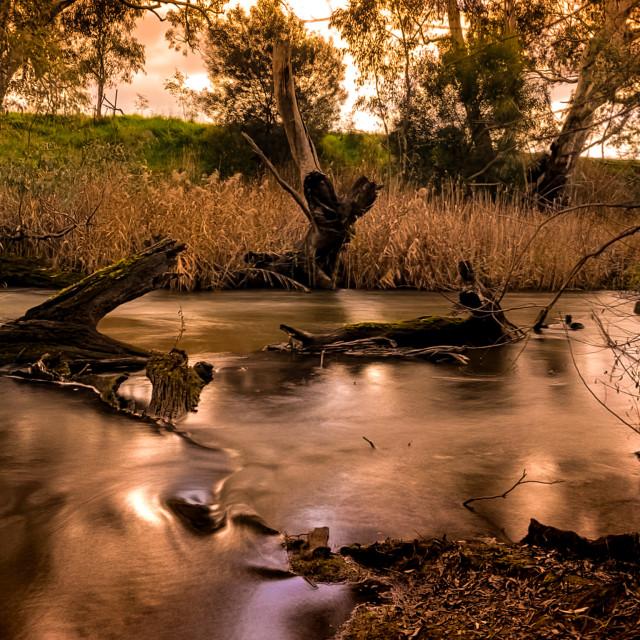 """Golden River"" stock image"