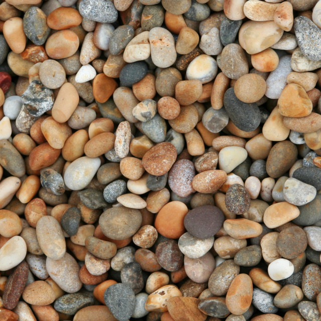 """Pebbles on Chesil Beach, version 1"" stock image"