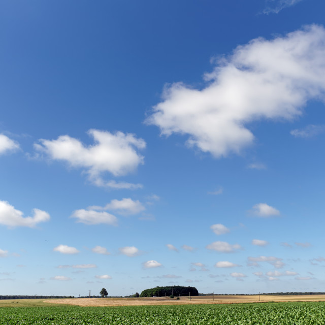 """""""Clouds on the plain"""" stock image"""