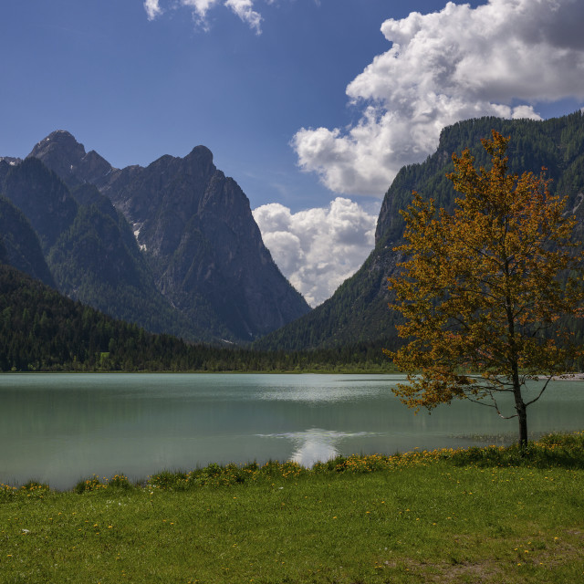 """""""Lago di Dobbiaco"""" stock image"""