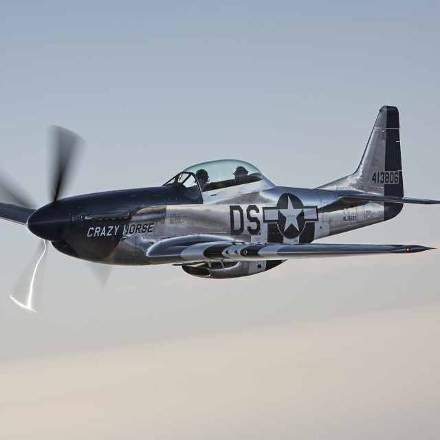 """""""A Mustang P-51 glides past in low sunlight."""" stock image"""