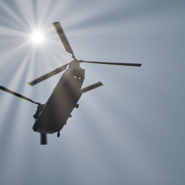 """Chinook in Sunlight"" stock image"