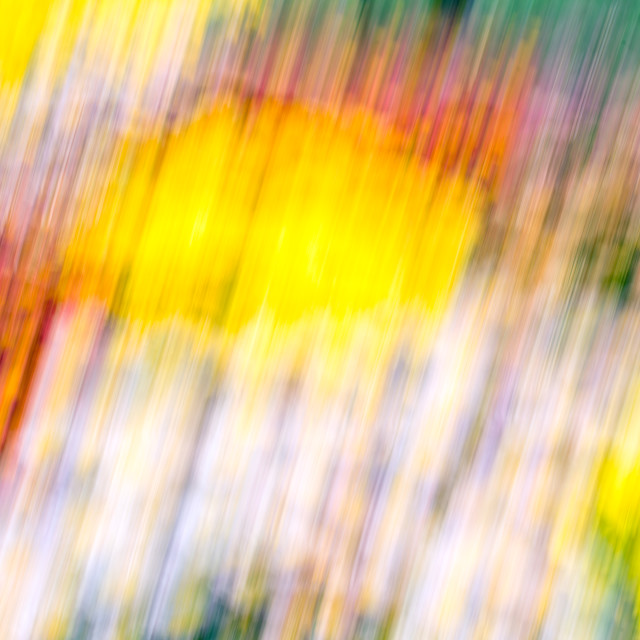 """""""Abstract Artwork Of Flowers."""" stock image"""