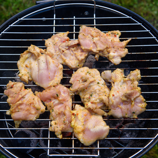 """""""Chicken shashlik meat ready for barbecue."""" stock image"""