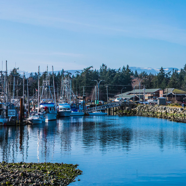 """French Creek Marina"" stock image"