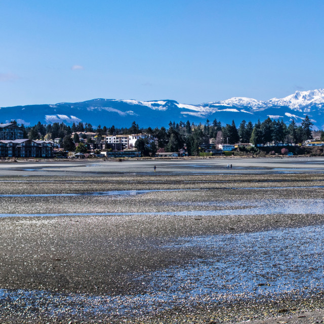 """""""A Parksville View"""" stock image"""