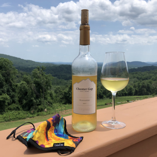 """Chester Gap Cellars Vineyard"" stock image"