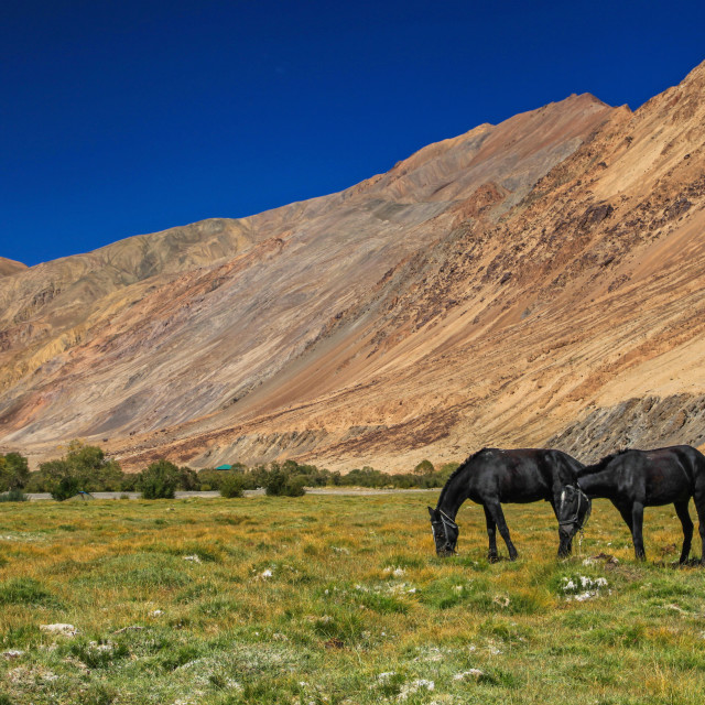 """Valley in Pamir highway"" stock image"