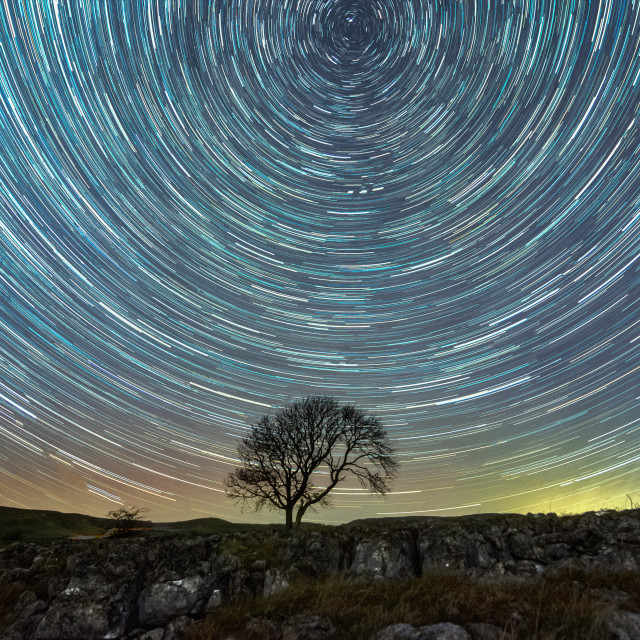 """""""Star trails and the lonely tree in Malham"""" stock image"""