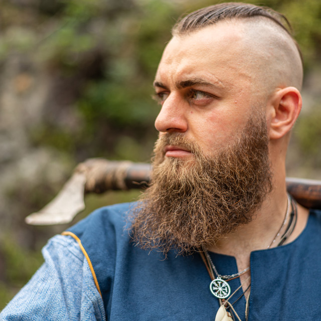 """""""Portrait of a Viking warrior with a long beard"""" stock image"""